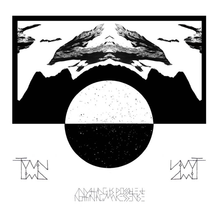Twin Limb - Anything Is Possible and Nothing Makes Sense